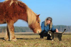 Tierkommunikation Angelika Drochner